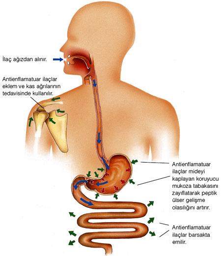steroid tedavisi ve yan etkileri